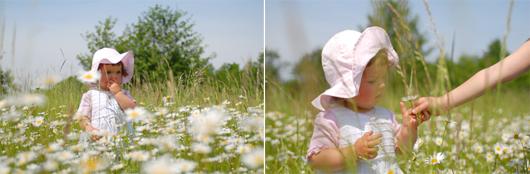 alergia zdrowie > Alergie wiosenne a homeopatia   naturalne i ekologiczne rodzicielstwo
