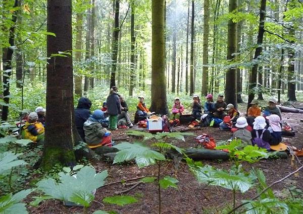 lesne-przedszkola5