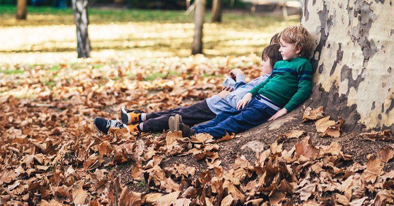 Dzieci, które mają częsty kontakt z naturą są mniej zestresowane, bardziej kreatywne i szybciej się uczą